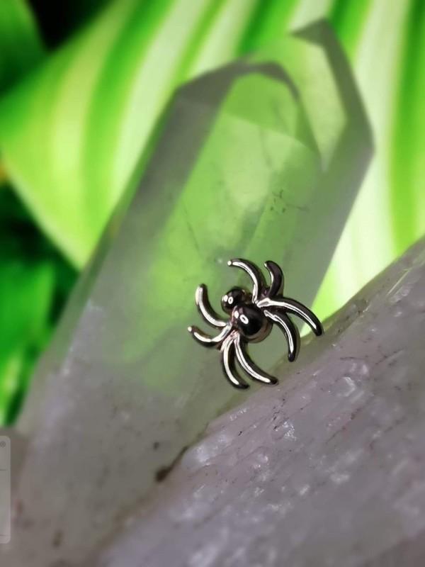 Accessoires piercing - Araignée Leroi